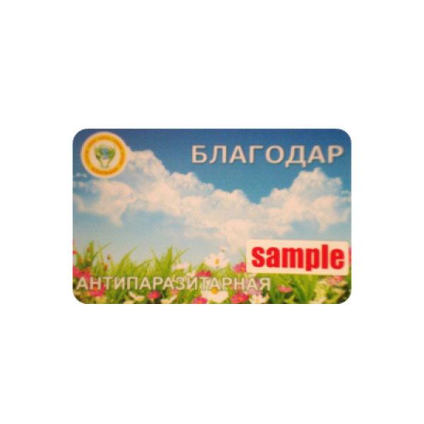 Card-Antiparassitario