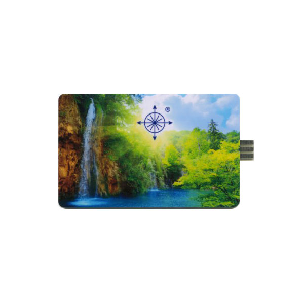 Card-Zero Vergine